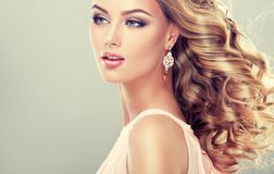 Piękny model z elegancką fryzurą Obrazy Royalty Free