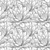 Piękny monochrom, czarny i biały bezszwowy wzór z lotosowymi kwiatami Pociągany ręcznie konturowe linie i uderzenia Zdjęcia Stock