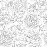 Piękny monochromatyczny czarny i biały bezszwowy tło peonie z liśćmi i pączkiem Zdjęcia Stock