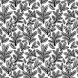 Piękny monochromatyczny kwiecisty ornament, Wektorowy bezszwowy wzór Obraz Stock