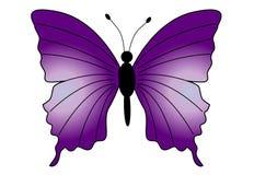 piękny motyl ilustracja wektor