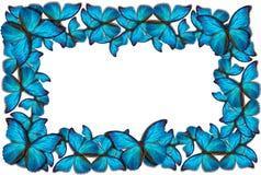 Piękny motyli tło Obrazy Royalty Free