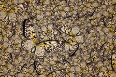 Piękny motyli tło Fotografia Stock