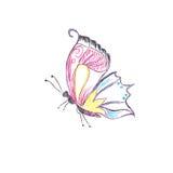 Piękny, motyli, wektorowy, ustawia, nakreślenie styl Obraz Royalty Free
