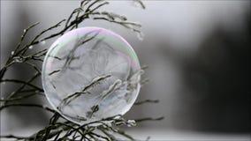 Piękny mydlanego bąbla marznięcie zdjęcie wideo