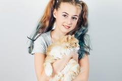 Piękny nastoletni dziewczyny mienie w ona ręka Syberyjski kot na popielatym tle zdjęcie royalty free