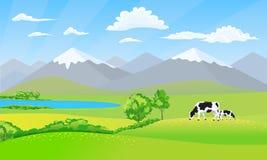 Piękny natura krajobraz z śnieżnego szczytu łąki i góry polami Czarny i biały krowy na trawie royalty ilustracja