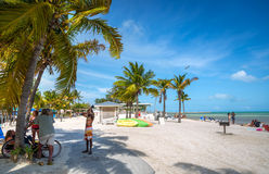 Piękny niebieskie niebo dzień w Key West zdjęcie royalty free