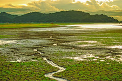 Piękny niebo podczas zmierzchu, Krakingowej ziemi z małą zieloną trawą i małego woda przepływu prowadzi rzeka, Obraz Royalty Free