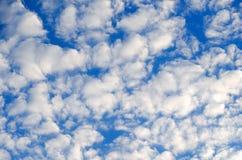 Piękny niebo z udziałami małe chmury abstrakta schematu Fotografia Royalty Free