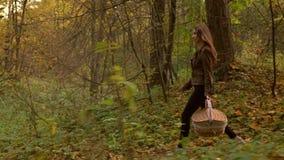 Piękny nikły dziewczyny odprowadzenie w jesień lesie trzyma pyknicznego kosz Profilowy widoku 4K steadicam wideo zbiory wideo