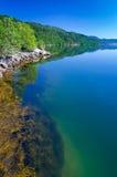 Piękny Norweski fjord wybrzeże w lato sezonie Fotografia Royalty Free