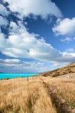 Piękny Nowa Zelandia krajobraz Fotografia Royalty Free