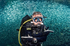 Piękny nurek w ryba i koral rafy tle zdjęcia royalty free
