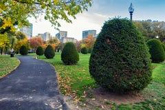 Piękny obcięty krzak i kolorowi drzewa w sezonie jesiennym w Boston Uprawiamy ogródek fotografia stock