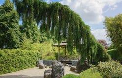 Piękny ogrodowy pomysł Fotografia Royalty Free