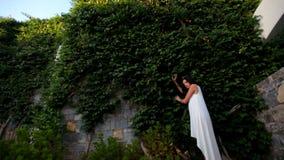 Piękny ogrodzenie zieleni bluszczy liście, młoda dziewczyna blisko go i zbiory wideo