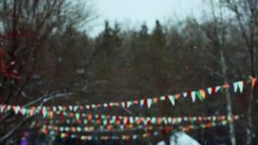 Piękny opad śniegu w zimie zbiory wideo