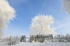 Piękny oszrania północ Chiny Obraz Stock