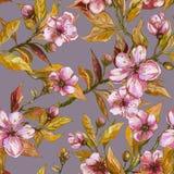 Piękny owocowy drzewo kapuje w kwiacie na szarym tle Menchia kwiaty i kolorów żółtych liście kwiaty azalii blisko dof płytkie poj Obraz Royalty Free
