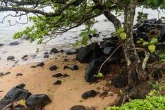Piękny Północny brzeg Kauai dukt po tym jak ważna ulewa, Hawaje zdjęcia stock