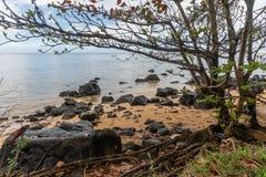 Piękny Północny brzeg Kauai dukt po tym jak ważna ulewa, Hawaje obrazy stock