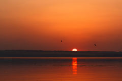 Piękny płonie zmierzchu krajobraz przy rzecznym Dnipro i pomarańczowy niebo nad ono z wspaniałego słońca złotym odbiciem na spokó Obrazy Royalty Free
