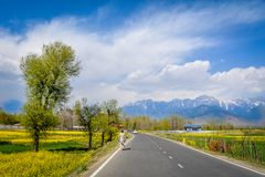 Piękny Pahalgam, Jammu i Kaszmir, zdjęcie royalty free