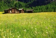 Piękny panoramiczny pocztówkowy widok malownicza wiejska halna sceneria w Alps z tradycyjnymi starymi wysokogórskimi halnymi chał zdjęcia royalty free