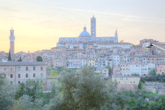 Piękny panoramiczny widok średniowieczny historyczny stary miasteczko Siena Zdjęcie Stock