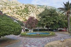 Piękny park blisko starego miasteczka Kotor zawsze przyciąga turysty Fotografia Stock