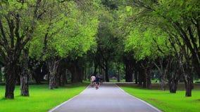 Piękny park dla ćwiczenia zbiory