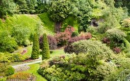 Piękny park przy Buchart ogródami obrazy stock