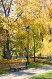 Piękny park w jesieni, z starymi latarniami ulicznymi i ławkami zdjęcie royalty free