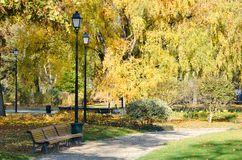 Piękny park w jesieni, z starymi latarniami ulicznymi i ławkami zdjęcia stock