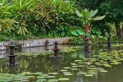 Piękny park w Tirta Gangga wody pałac na Bali wyspie, Indo obrazy royalty free
