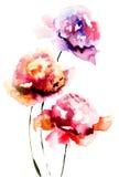 Piękny peonia kwiat Fotografia Royalty Free