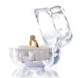 Piękny pierścionek Fotografia Royalty Free