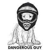 Piękny pies w motocyklu hełmie Purebred szczeniak Wektorowa ilustracja dla pocztówki lub plakata ilustracji