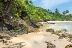 Piękny plażowy scenary w Ameryka Południowa tropikalnym terenie Zdjęcia Royalty Free