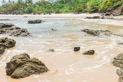 Piękny plażowy scenary w Ameryka Południowa tropikalnym terenie Fotografia Stock