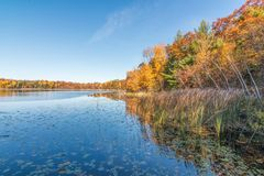 Piękny pogodny jesień dzień na małym dalekim jeziorze w Północnym Wisconsin - spadków kolory i odbicie drzewa na spokojnych jezio obrazy royalty free