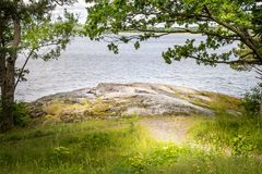 Piękny pokojowy, spokojny lato widok ścieżka halizna wodą z i, fotografia stock