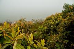 Piękny pokojowy widok na ocean krajobraz San obraz royalty free