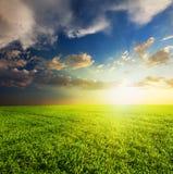 piękny pola zieleni zmierzch fotografia royalty free