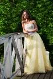 piękny princess Obrazy Stock