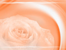 piękny projekt tło Obrazy Royalty Free