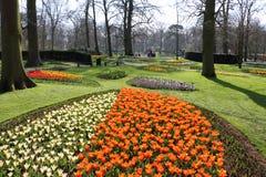 Piękny projektujący ogród w holandiach zdjęcia stock