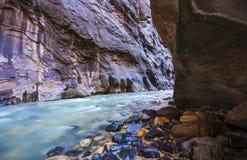 Piękny przesmyk w popołudniu w Zion parku narodowym, Utah Fotografia Royalty Free
