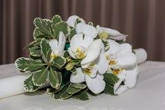 Piękny przygotowania białe orchidee, zieleń liście i świeczka, Zdjęcia Stock